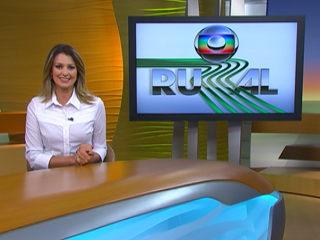 Globo Rural 2013